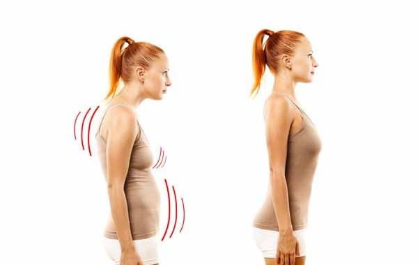 elongated torso