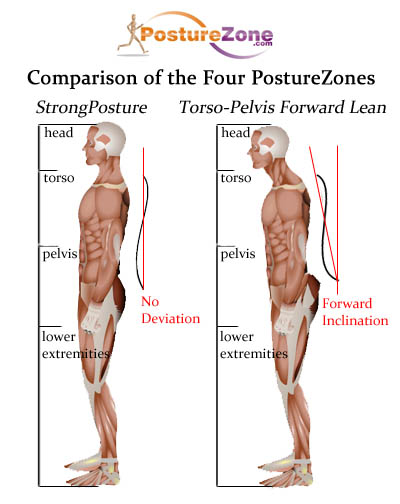 posturezonescomparisonlarge