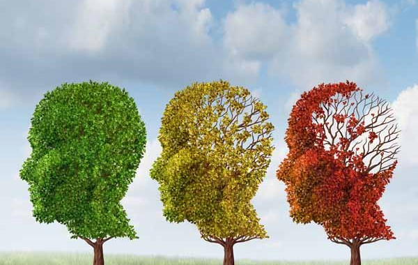 aging memory decline